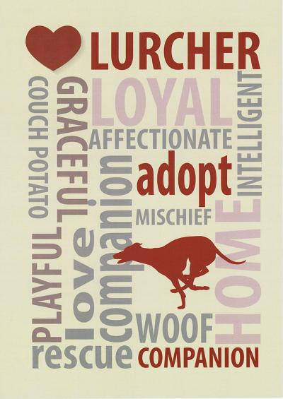 A4 print - Lurcher