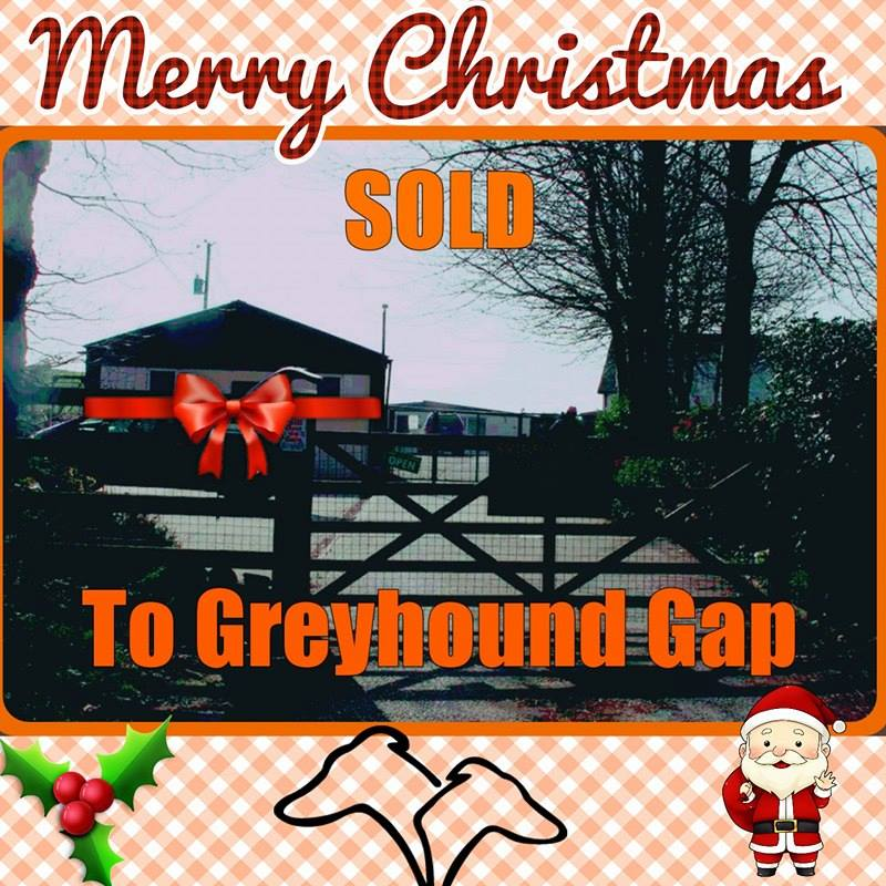 so there is nothing else more to say than thank you merry christmas from the whole team - Best Christmas Present Ever